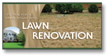 #903 - Lawn Renovation Super Jumbo Postcard